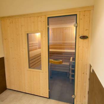Wooden sauna with glass door and window