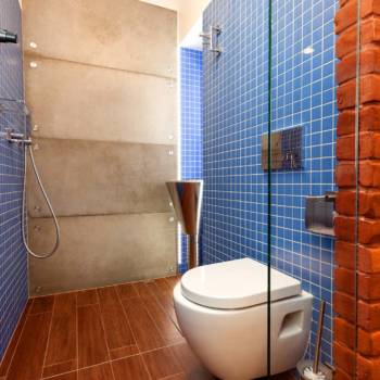 Blue and brown toilet with glass door